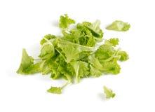 Grüner Kopfsalat auf Weiß lizenzfreie stockbilder