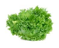Grüner Kopfsalat getrennt auf dem weißen Hintergrund Lizenzfreie Stockfotos