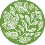 Grüner Kreis der dekorativen Spitzen- Blätter stock abbildung