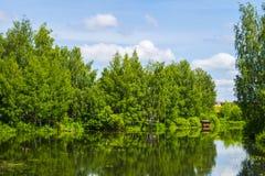 Grüner Landschaftssommer stockfoto