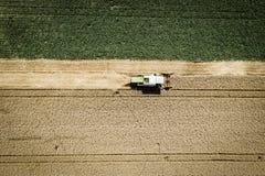 Grüner Mähdrescher, der Weizen auf einem Feld in Österreich erntet Stockfotografie