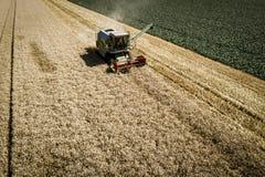 Grüner Mähdrescher, der Weizen auf einem Feld in Österreich erntet Lizenzfreie Stockfotografie