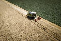 Grüner Mähdrescher, der Weizen auf einem Feld in Österreich erntet Stockbild