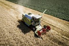 Grüner Mähdrescher, der Weizen auf einem Feld in Österreich erntet Lizenzfreie Stockfotos