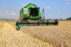 Grüner Mähdrescher entfernt Weizen vom Feld an einem sonnigen Tag lizenzfreies stockbild