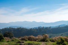 Grüner Mountain View Lizenzfreie Stockfotografie