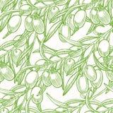 Grüner nahtloser Hintergrund mit Oliven lizenzfreie abbildung