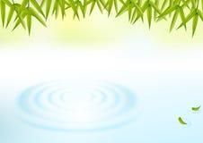 Grüner natürlicher Hintergrund Lizenzfreie Stockfotos