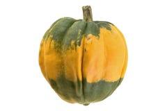 Grüner orange Kürbis lizenzfreie stockfotografie