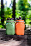 Grüner orange Mason Jars mit Kastanien Stockbild