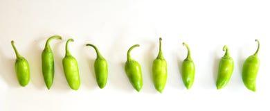 Grüner Paprika/Chili Pepper Lizenzfreies Stockfoto