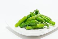 Grüner Paprikapfeffer Stockbild