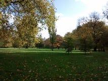 Grüner Park Stockfotografie
