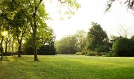 Grüner Park Stockfoto