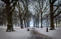 Grüner Park des Schnees in der Nacht, London Stockfoto