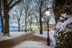 Grüner Park des Schnees in der Nacht, London Stockfotos