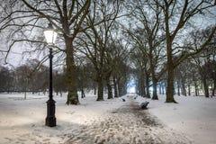 Grüner Park des Schnees in der Nacht, London Lizenzfreie Stockfotografie