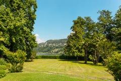 Grüner Park im Freien Stockbild
