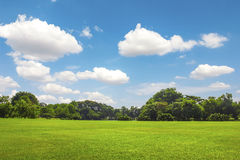 Grüner Park im Freien mit Wolke des blauen Himmels stockbilder