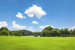 Grüner Park im Freien mit Wolke des blauen Himmels Lizenzfreie Stockfotografie