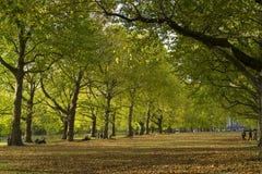 Grüner Park London Großbritannien, am 16. Oktober 2017 Lizenzfreies Stockbild