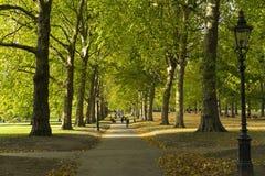 Grüner Park London Großbritannien, am 16. Oktober 2017 Stockfoto