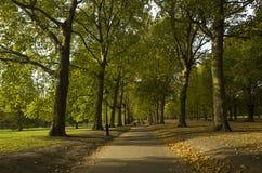Grüner Park London Großbritannien, am 16. Oktober 2017 Lizenzfreies Stockfoto