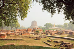 Grüner Park mit ruinierten Tempelwänden und heiliges Dhamekh Stupa in Sarnath Indien Lizenzfreies Stockbild