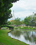 Grüner Park mit Teich stockfotos