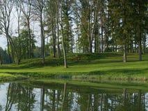 Grüner Park reflektieren sich im Teich Stockfoto