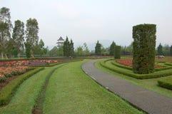 Grüner Pfad auf Blumengarten. Stockfotos