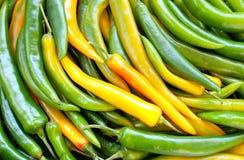 Grüner Pfeffer Chile Lizenzfreie Stockbilder