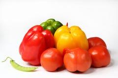 Grüner Pfeffer und Tomate Lizenzfreies Stockfoto