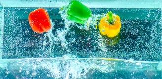 Grüner Pfeffer vereinbart im Wasser Stockfotos