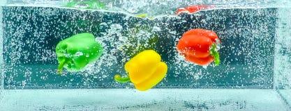 Grüner Pfeffer vereinbart im Wasser Stockfotografie