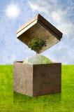 Grüner Planet im Wiederverwertungspapierkasten Lizenzfreie Stockfotos