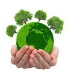 Grüner Planet mit Bäumen in den Händen Lizenzfreie Stockfotos