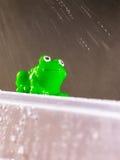 Grüner Plastikfrosch im Regen stockfoto
