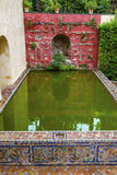 Grüner Pool-Reflexion Alcazar Royal Palace Sevilla Stockbilder
