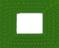 Grüner quadratischer Rahmen von den Blättern Lizenzfreie Stockfotos