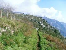 Grüner Rasen auf dem Berg Faito in Italien stockbilder