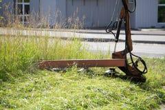 Grüner Rasen mit Heuurheberwiese mähen natürliches stockfoto