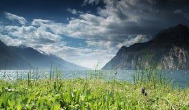 Grüner Rasen und See Lizenzfreie Stockbilder