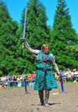 Grüner Ritter hebt seine Klinge im Triumph an Stockfotos
