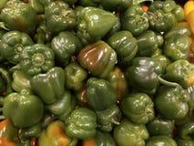 Grüner süßer Pfeffer Stockbild