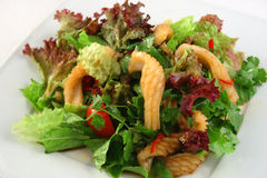 Grüner Salat Lizenzfreies Stockbild