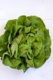 Grüner Salat Lizenzfreie Stockfotografie