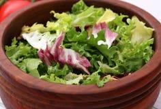 Grüner Salat _1 lizenzfreies stockbild