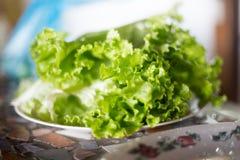 Grüner Salat auf der Platte Stockfotografie
