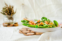 Grüner Salat mit Arugula, Mais, Karotten und gebackenen Kichererbsen heal stockbild